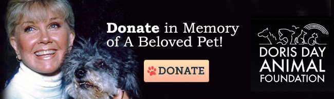 """Donate in Memory of A Beloved Pet!"" - www.dorisdayanimalfoundation.org"